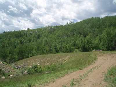 Deadwood Residential Lots & Land For Sale: Phase Ii Mystery Wagon Road