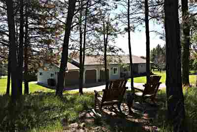 Rapid City Single Family Home For Sale: 4782 Cliff
