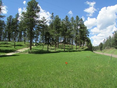 Rapid City Residential Lots & Land For Sale: 23564 Heald