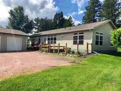 Hill City Single Family Home For Sale: 970 Smokey