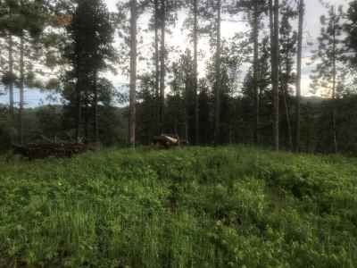 Deadwood, Deadwood Area, Deadwood/central City, Lead Residential Lots & Land Under Contract-Dont Show: Monitor