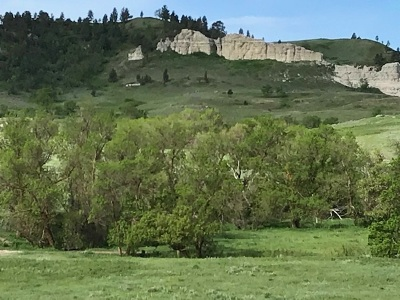 Farm & Ranch For Sale: 13651 Rock Ranch