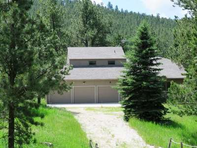 Custer County Single Family Home For Sale: 12044 Woodford Rd