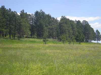 Custer County Residential Lots & Land For Sale: 26802 Lowell Drive