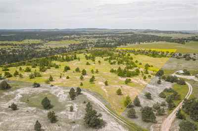 Custer County Residential Lots & Land For Sale: Lot 2 Lariat