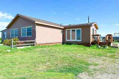 Rapid City Single Family Home For Sale: 5800 Bennett