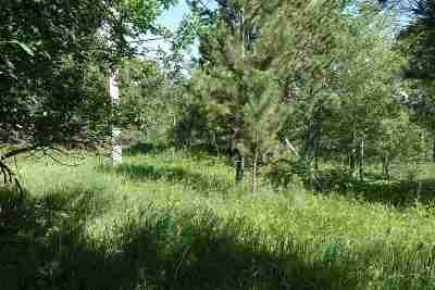 Deadwood, Deadwood Area, Deadwood/central City, Lead Residential Lots & Land For Sale: Mountain View