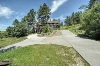 Single Family Home For Sale: 19318 Hwy 85