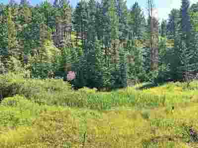Deadwood Residential Lots & Land For Sale: Lot 1 Two Bit