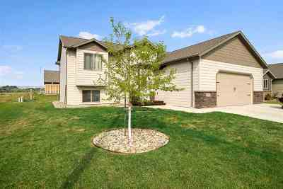Rapid City Single Family Home For Sale: 2911 Olive Grove