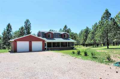 Custer Single Family Home Uc-Contingency-Take Bkups: 25583 Highlands Rd