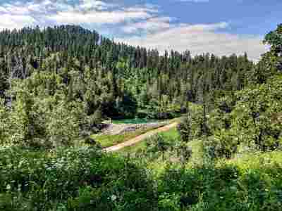 Deadwood, Lead Residential Lots & Land For Sale: Terry Gulch