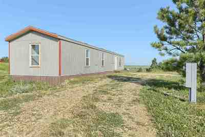 Belle Fourche Single Family Home For Sale: 19135 Canyon