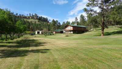 Farm & Ranch For Sale: 166 Thorn Divide Road
