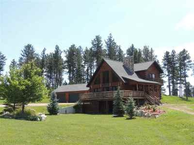 Custer Single Family Home For Sale: 12293 Young