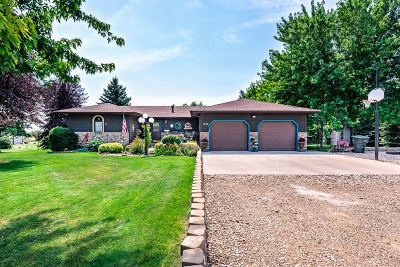 Belle Fourche Single Family Home For Sale: 1340 National St