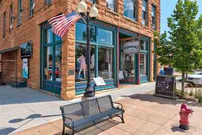 Spearfish Commercial For Sale: 544 N Main Street
