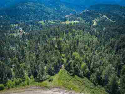 Deadwood, Lead Residential Lots & Land For Sale: Lot 41r Morning Star