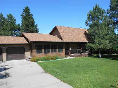 Sturgis Single Family Home Under Contract-Dont Show: 1315 Evergreen Drive