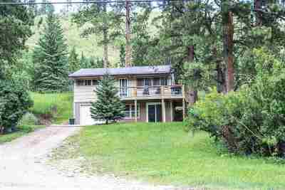 Lead SD Single Family Home For Sale: $215,000