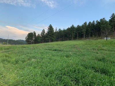 Pringle SD Residential Lots & Land For Sale: $131,570