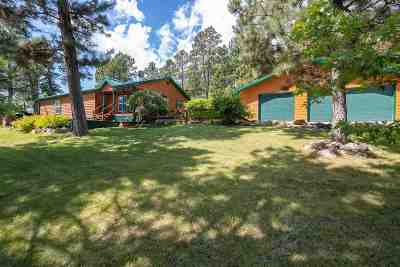 Hermosa Single Family Home For Sale: 24641 Crooked Canyon Road