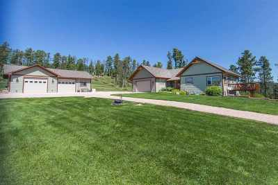 Rapid City Single Family Home For Sale: 13240 Daybreak Ridge Rd
