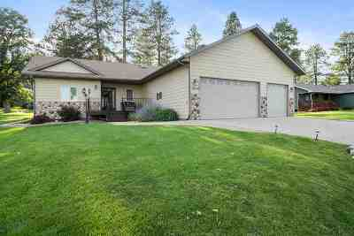 Sturgis Single Family Home For Sale: 20670 76