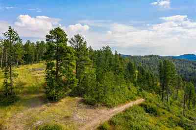 Spearfish Residential Lots & Land For Sale: Ms 1376 Sampson #2 Lode