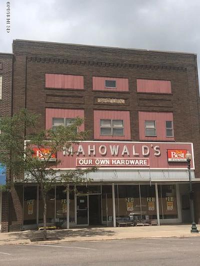 Watertown Commercial For Sale: 25 N Broadway Street