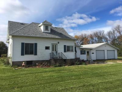 Henry Single Family Home For Sale: 210 Cedar Street N