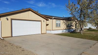Watertown Single Family Home For Sale: 2353 10th Avenue #SW