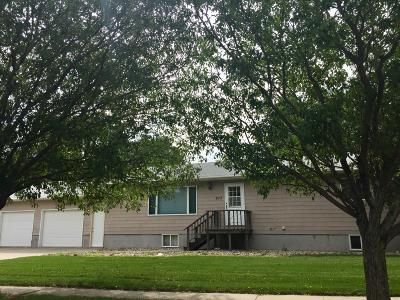 Watertown Single Family Home For Sale: 203 18th Street NE