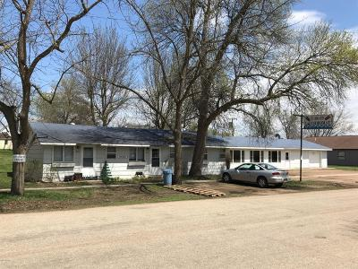 Clear Lake Commercial For Sale: 413 3rd Street W