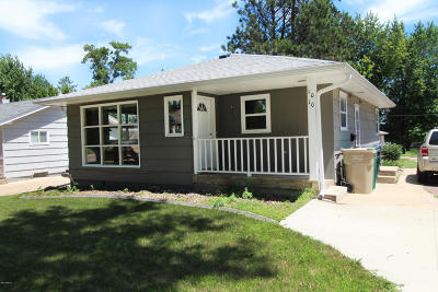 Watertown Single Family Home For Sale: 1010 2nd Street NE