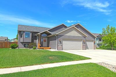 Watertown Single Family Home For Sale: 907 16th Avenue NE