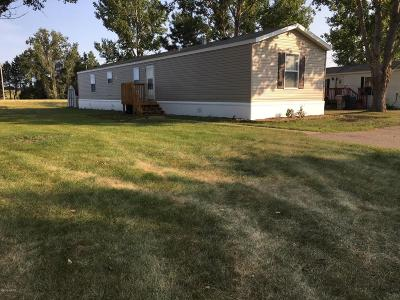 Watertown Single Family Home For Sale: 30 19th Avenue SW