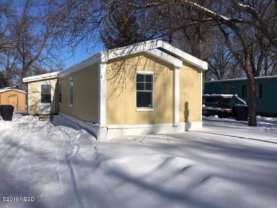 Watertown Single Family Home For Sale: 913 11th Avenue NW