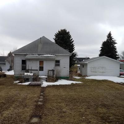 Hayti Single Family Home For Sale: 203 Charger Avenue