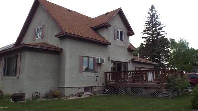 Hayti Single Family Home For Sale: 311 Redbird Avenue