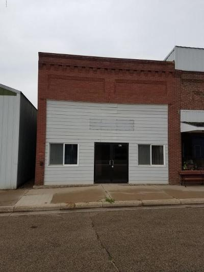 Hayti Commercial For Sale: 107 Main Avenue