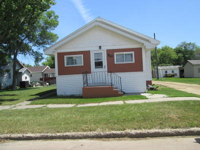Watertown Single Family Home For Sale: 710 S Maple Street