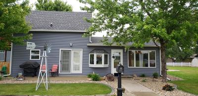 Watertown Single Family Home For Sale: 108 14th Street SW