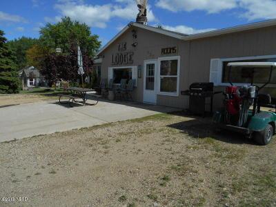 Arlington Single Family Home For Sale: 135 SW Lake Drive