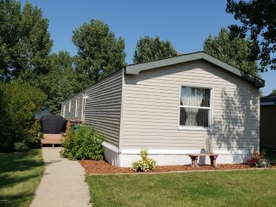 Watertown Single Family Home For Sale: 3413 12th Avenue SW
