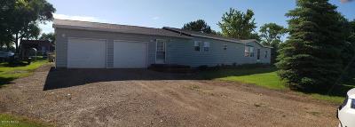 Henry Single Family Home For Sale: 110 N Cedar Street