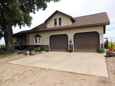 Henry Single Family Home For Sale: 16957 445th Avenue
