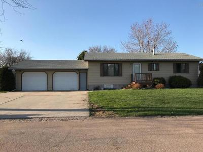 Milbank Single Family Home For Sale: 207 Diane Court
