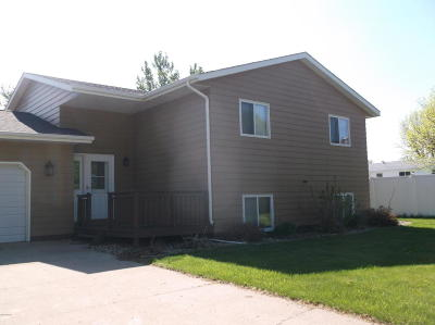 Watertown Single Family Home For Sale: 412 Herzog Drive Drive