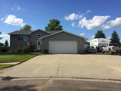 Watertown Single Family Home For Sale: 2041 Cedar Drive